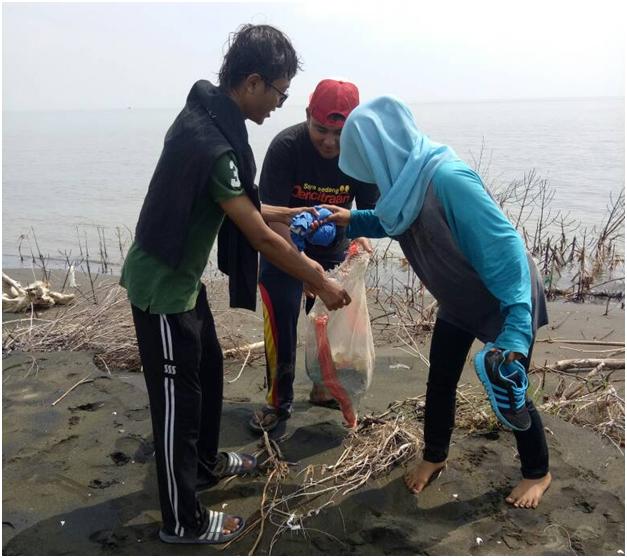 uniss mangrove care 2